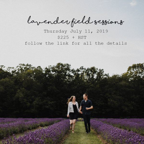 Lavender Field Sessions